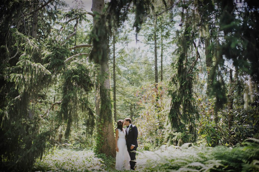 Kissing in a forrest with lush greens and beautiful trees
